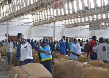 Tobacco bales being rolled into the auction floors