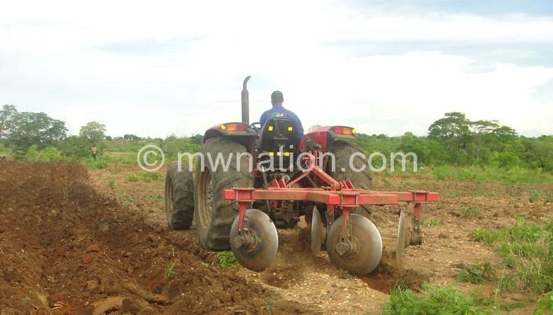 Commercial farmer   The Nation Online