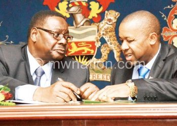 Govt claims Mutharika and Chilima will not share the presidencial cake with a third person