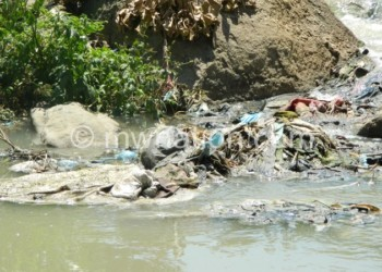 Thin plastic deposits along Mudi  River in Blantyre