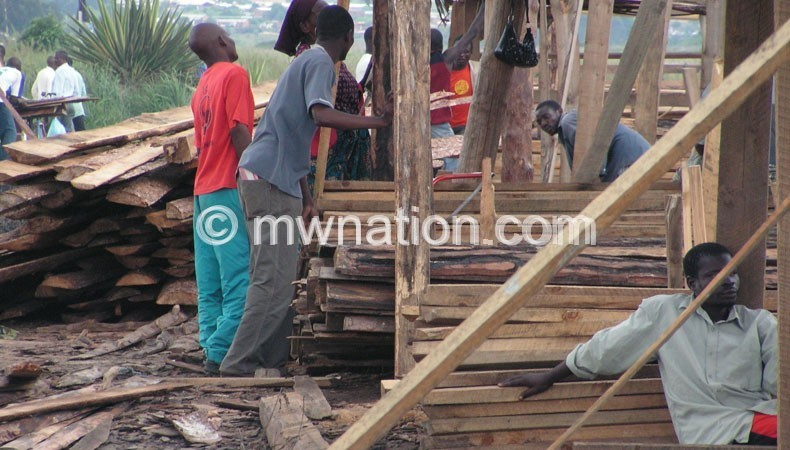 timber | The Nation Online