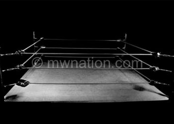 boxing ring 1024x690 | The Nation Online