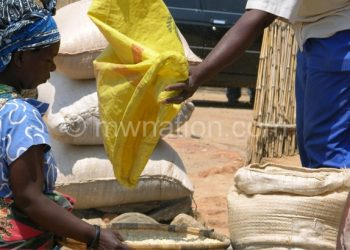 Police is zeroing in on illegal maize traders