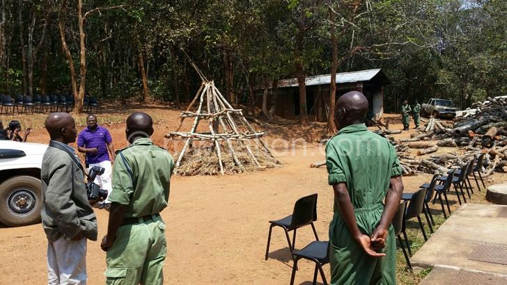 ivory burning | The Nation Online