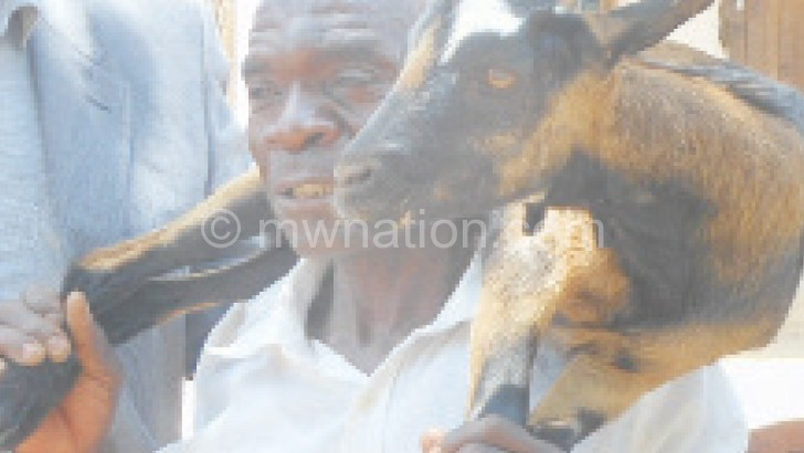 goat | The Nation Online