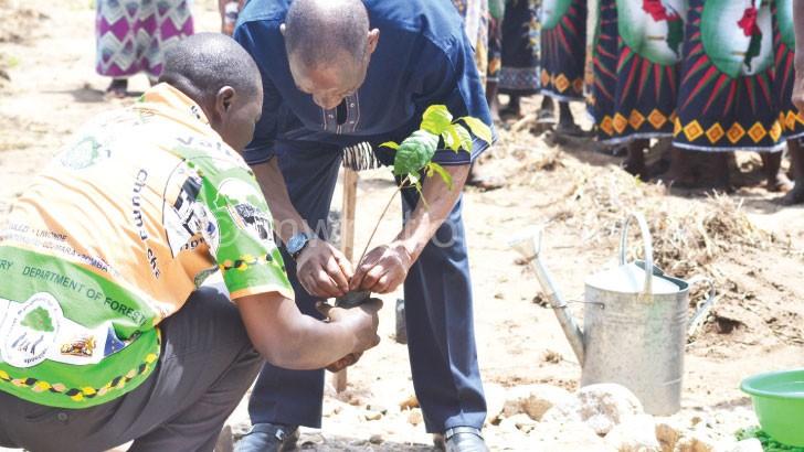 Kayambo (R ) planting a tree