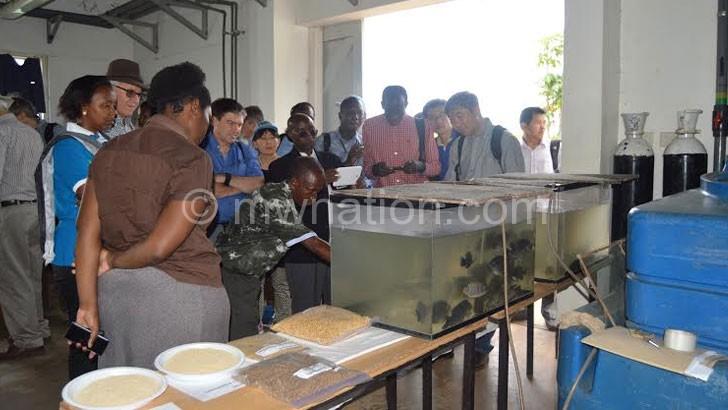 Researchers appreciating the fish farm at LUANAR Bunda Campus