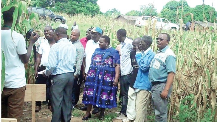 Jumbe (R) and fellow committee members being briefed  about drought-tolerant maize varieties