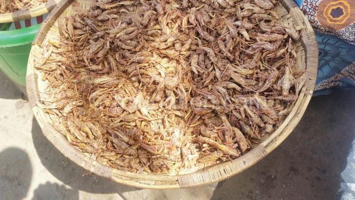 Ngakhale pali chiletso, dzombe likugulitsidwa malicheromalichero m'misika monga ku Limbe ndi ku Blantyre