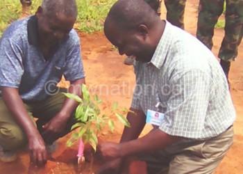 Rev Chimphepo planting a tree