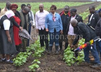 Admarc and Greenbelt Initiative officials appreciating a cotton field