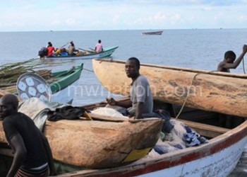 salima fishermen   The Nation Online