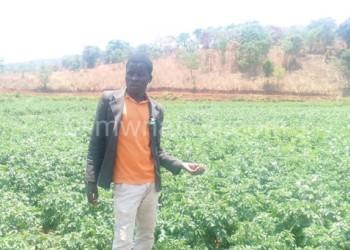 Manda farmer   The Nation Online