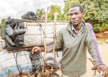 Charcoal business | The Nation Online