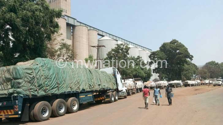 maize than required   The Nation Online