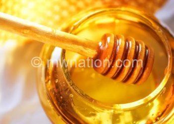 141104074409 honey jar stock live video | The Nation Online