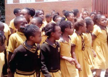 schools | The Nation Online