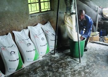 Zuwawo hard at work in his Cassava starch factory