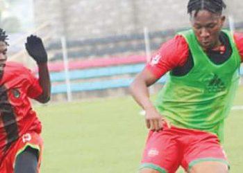 Ngwenya (R) shows his skills during training session