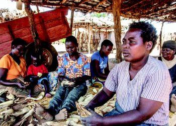 Women shell maize in the Malembo Village in Lilongwe, the birthplace of Chakwera
